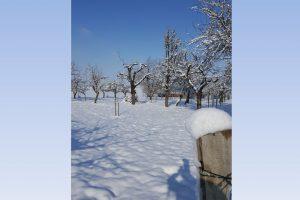 Winter ade!